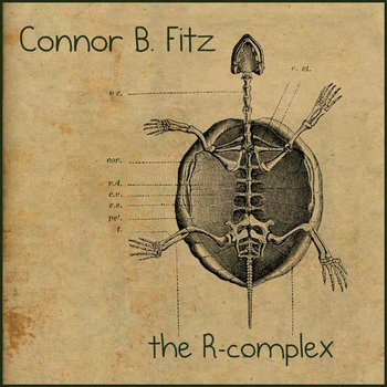 The R-Complex by Connor B. Fitz