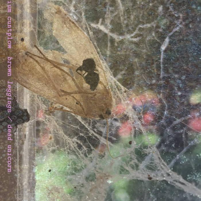 brown leggings/dead unicorn cover art