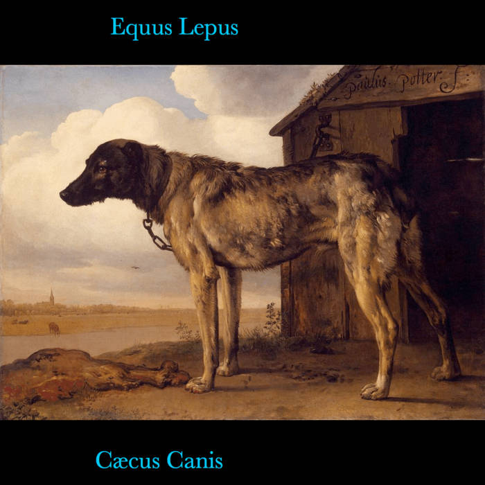 Cæcus Canis cover art