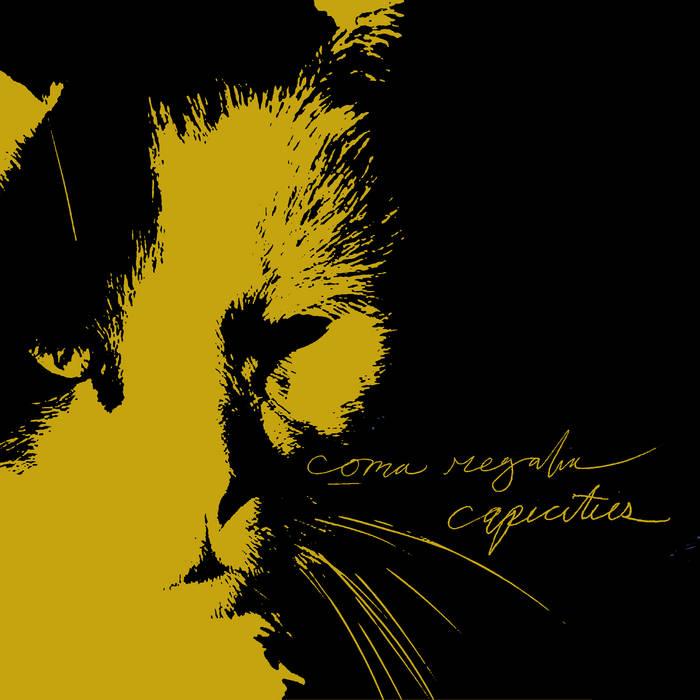 """Capacities/Coma Regalia split 7"""" cover art"""