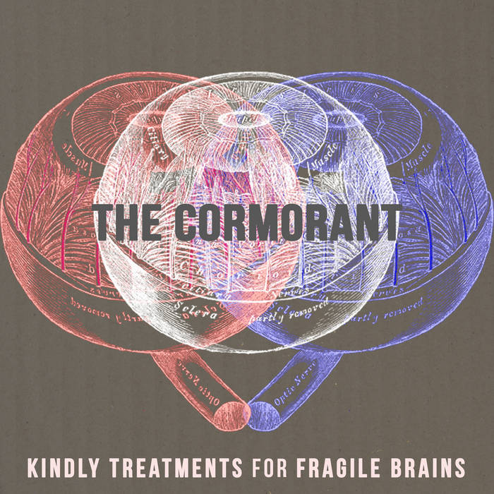 Kindly Treatments for Fragile Brains cover art