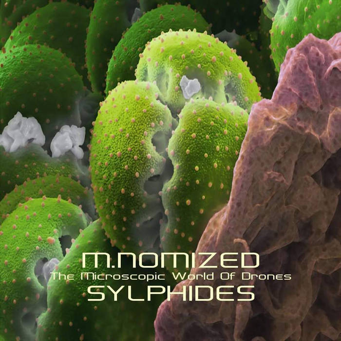 M.Nomized/Sylphides - The Microscopic World of Drones GHGR7414 cover art
