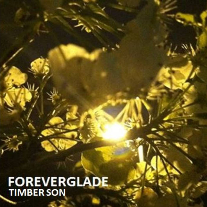 Foreverglade cover art