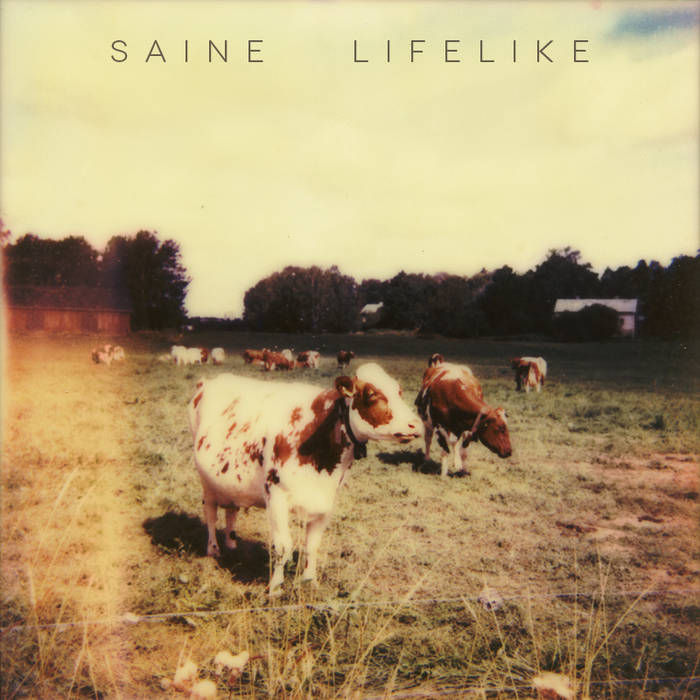 Lifelike cover art
