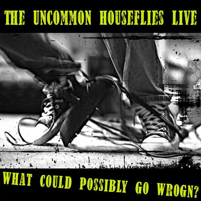 The Uncommon Houseflies Live: What Could Possibly Go Wrogn? cover art