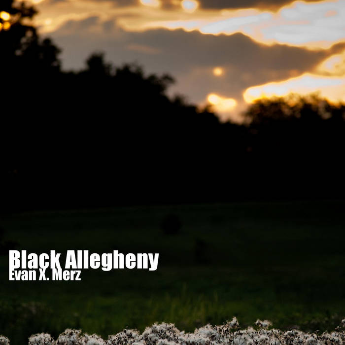 Black Allegheny cover art