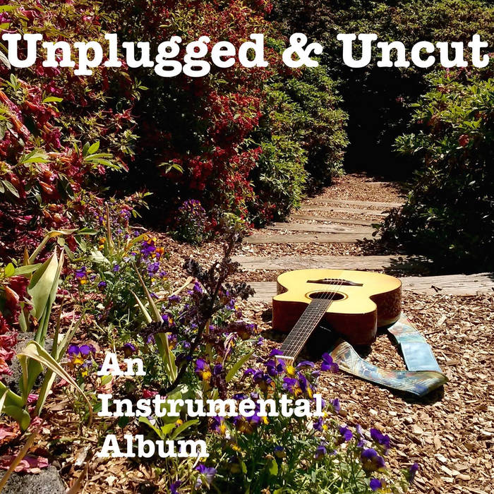 Unplugged And Uncut cover art
