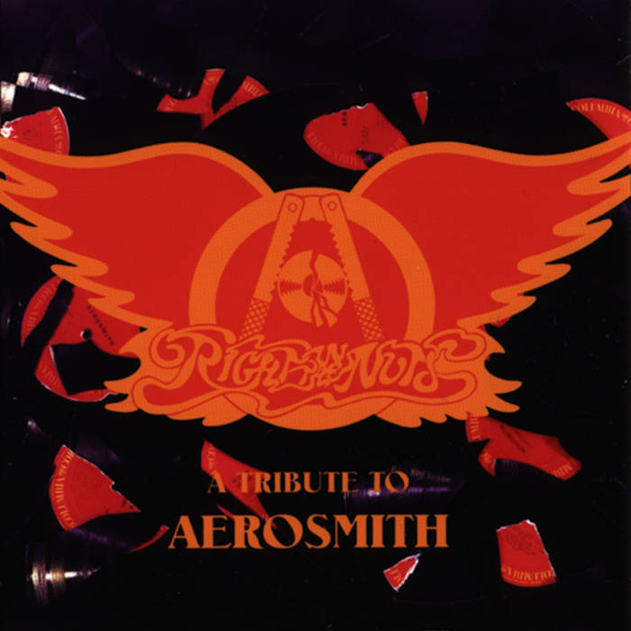 Right in the Nuts (A Tribute to Aerosmith) cover art
