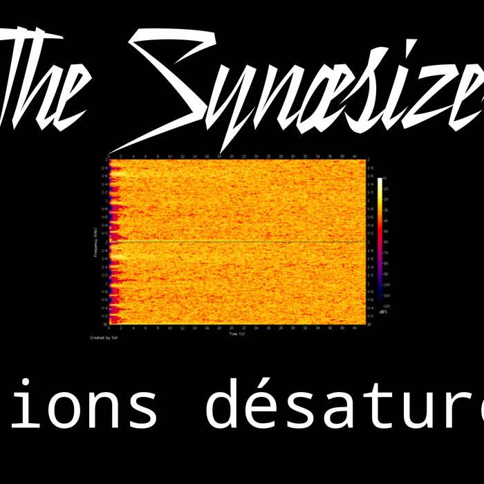 The Synaesizer - Visions Désaturées cover art