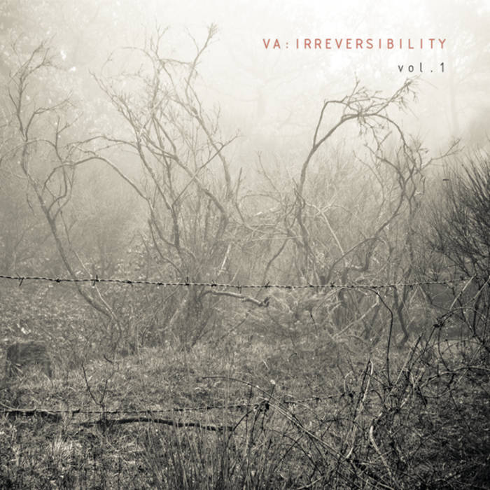 IRREVERSIBILITY vol.1 cover art