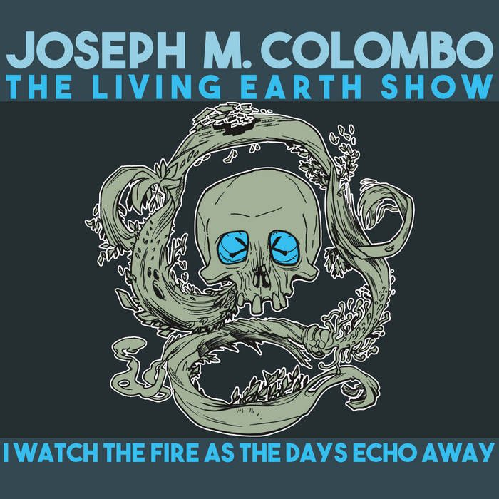 I watch the fire as the days echo away cover art