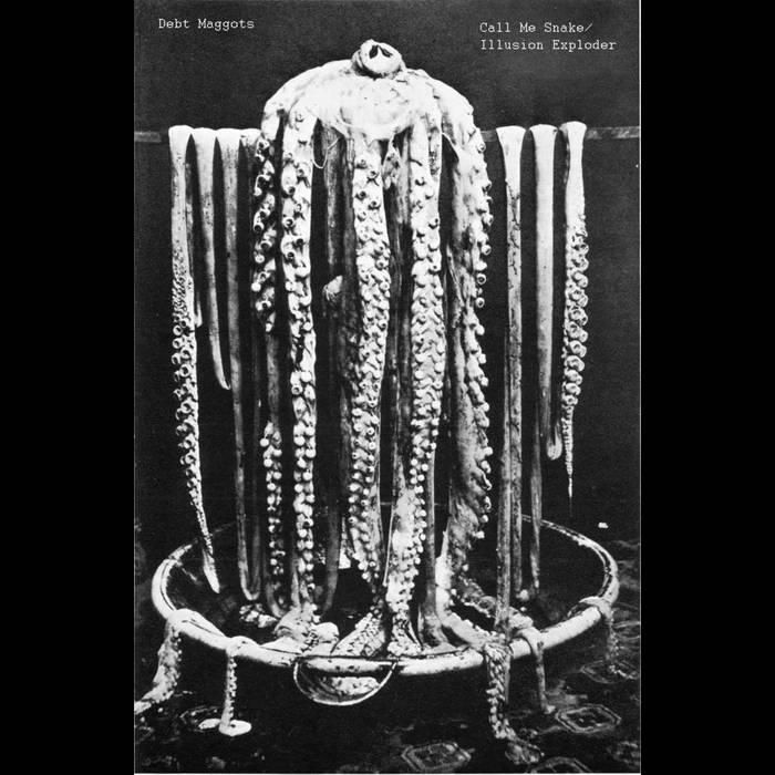Call Me Snake/Illusion Exploder [Desetxea] cover art