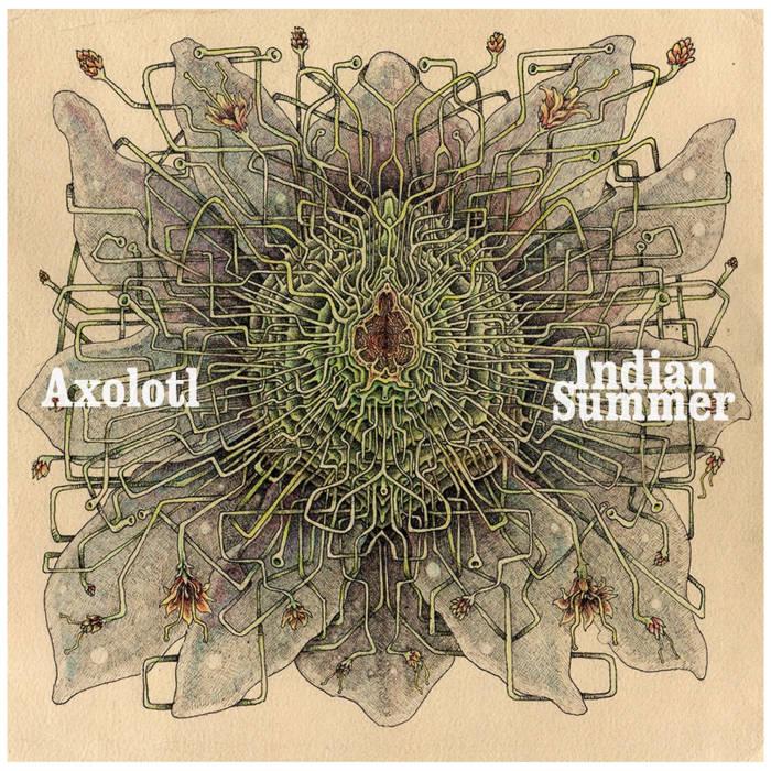 Axolotl b/w Indian Summer cover art