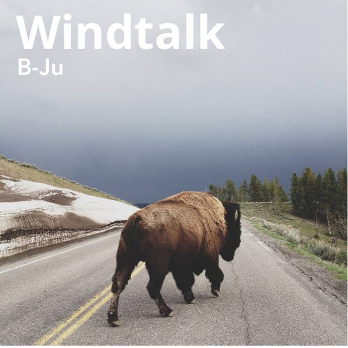 Windtalk cover art