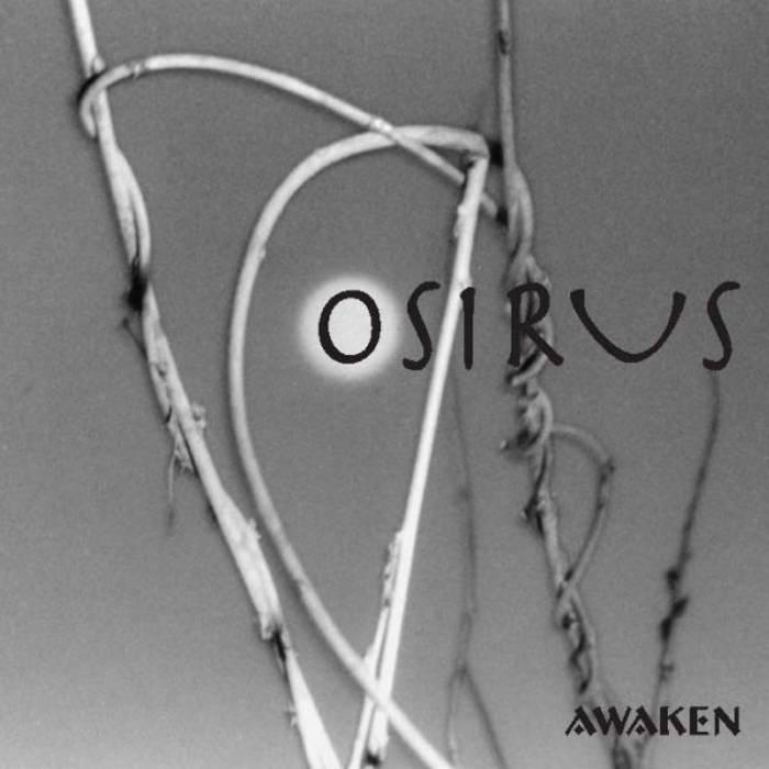 Awaken cover art