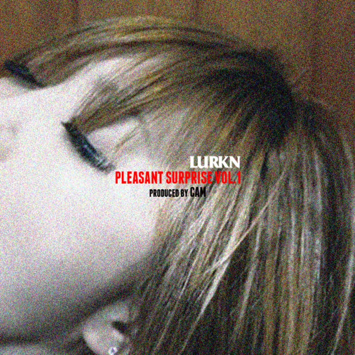 A Pleasant Surprise Vol. 1 cover art