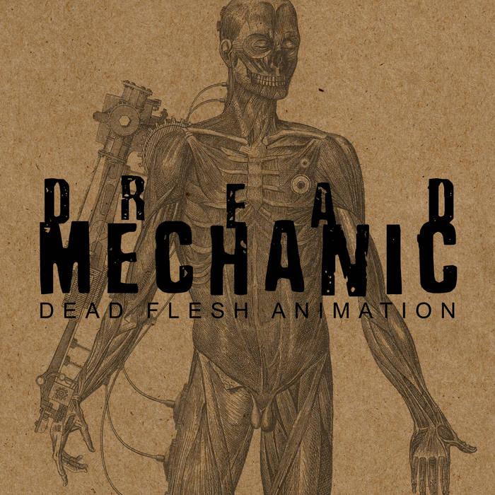 DEAD FLESH ANIMATION cover art