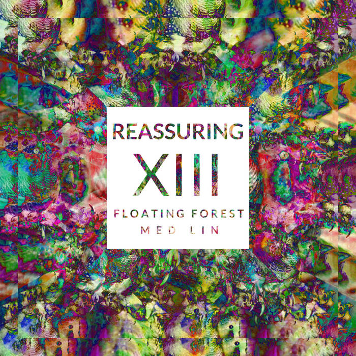 Reassuring XIII cover art