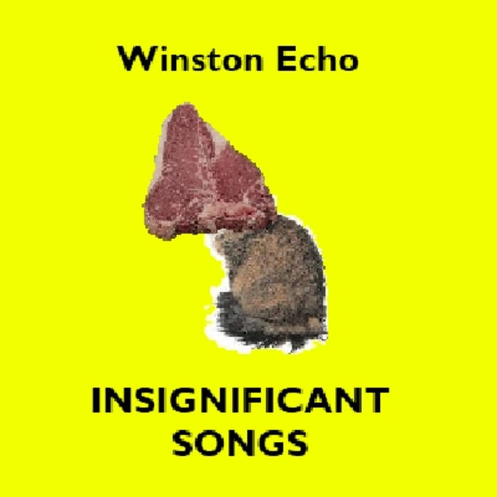 Insignificant Songs cover art