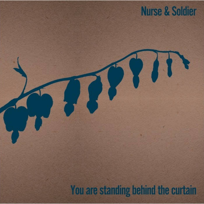 You are standing behind the curtain cover art