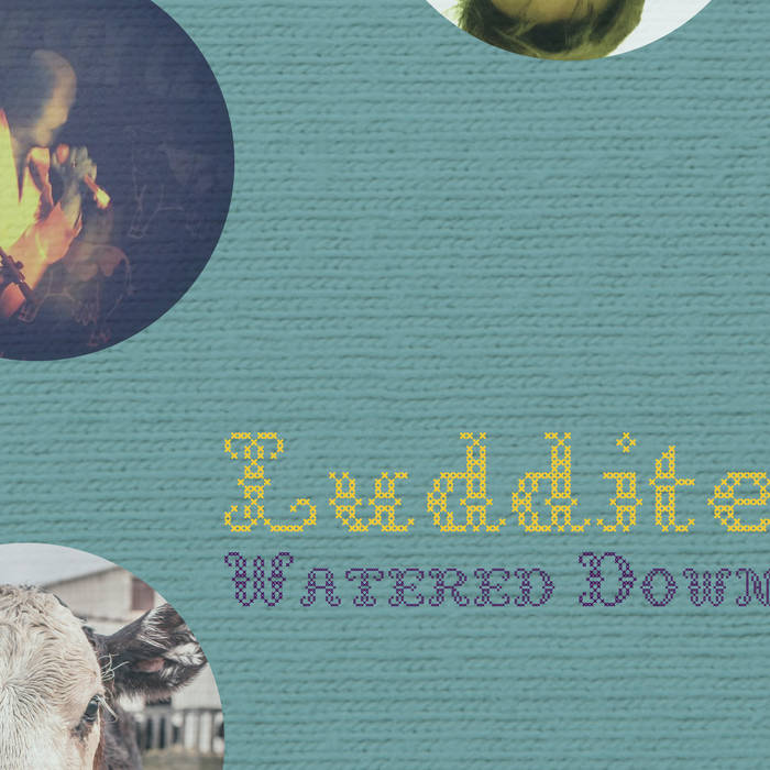 Luddite cover art