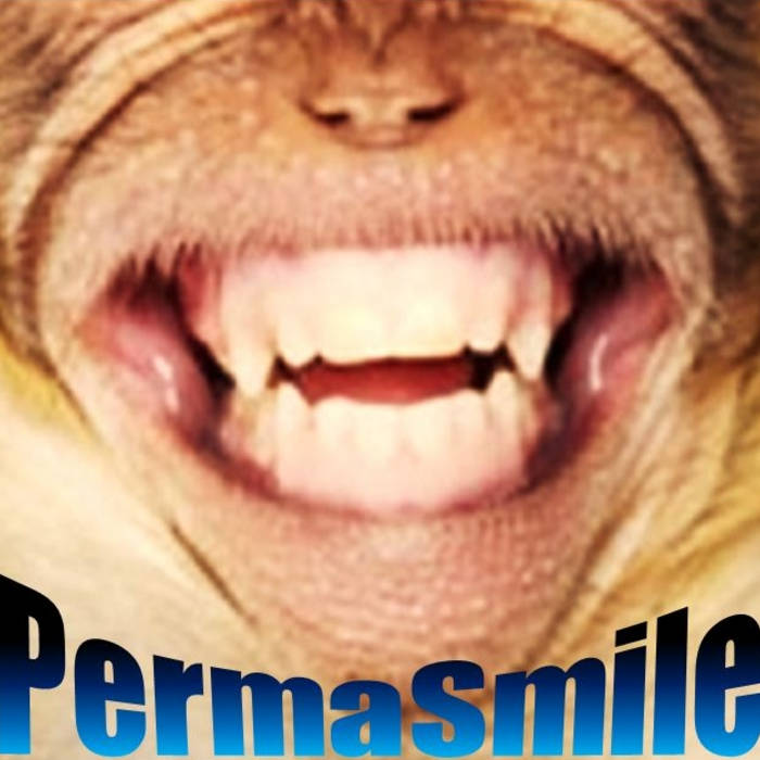PermaSmile 5 song EP cover art