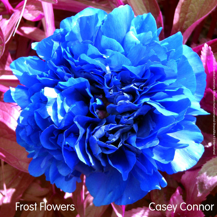 Frost Flowers cover art