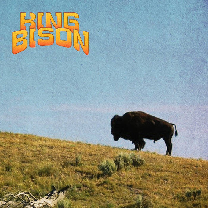 King Bison cover art