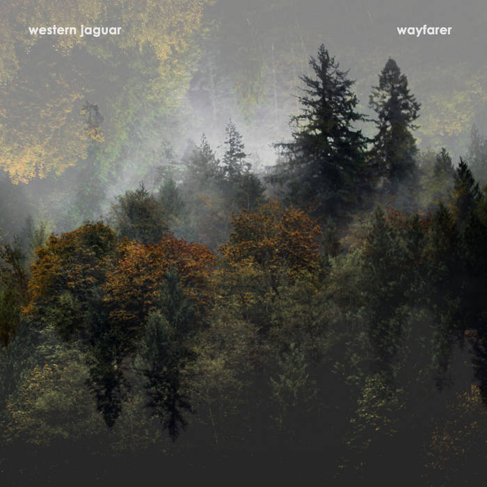 Wayfarer cover art