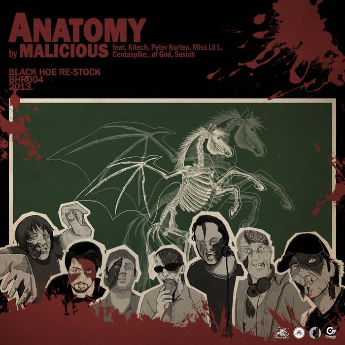 Anatomy (re-stock) cover art