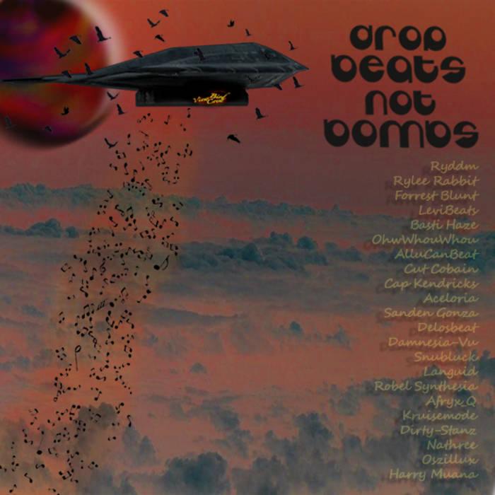Drop Beats Not Bombs cover art