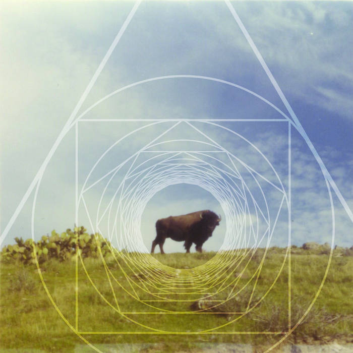 Buffalo Way cover art