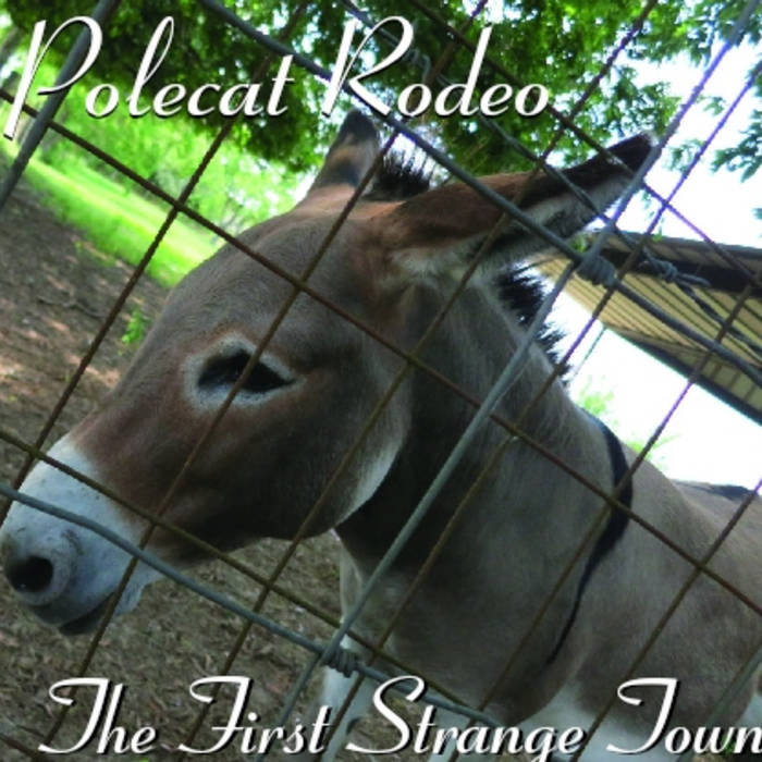 The First Strange Town cover art