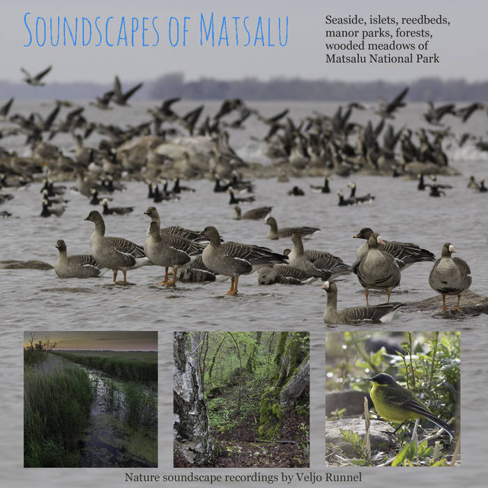 Soundscapes of Matsalu cover art