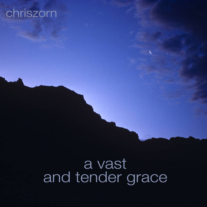 A Vast and Tender Grace cover art