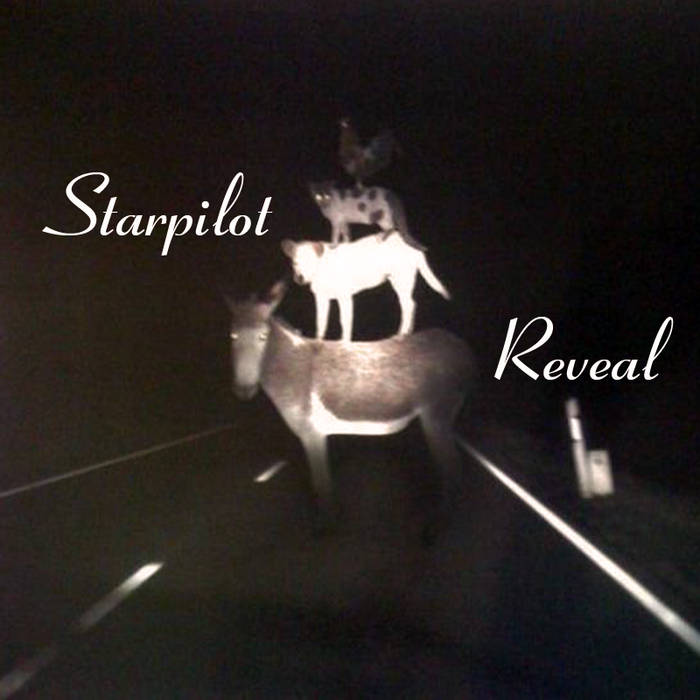Reveal cover art