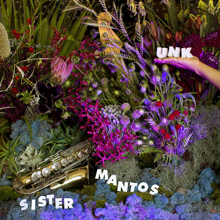 UNK cover art