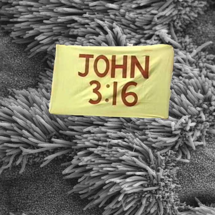 John 3:16 cover art