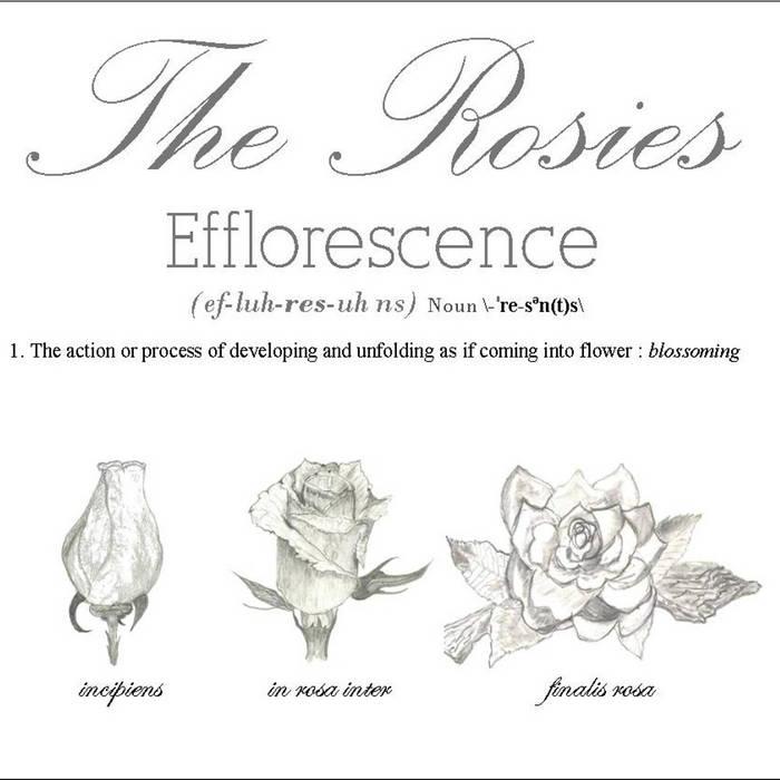 Efflorescence cover art