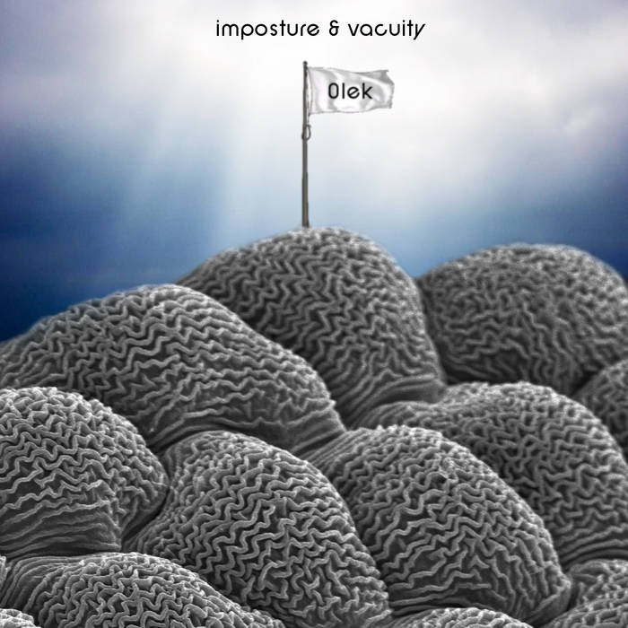 Imposture & Vacuity cover art
