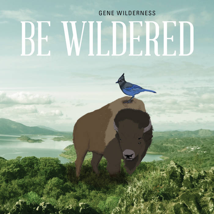 Be Wildered cover art