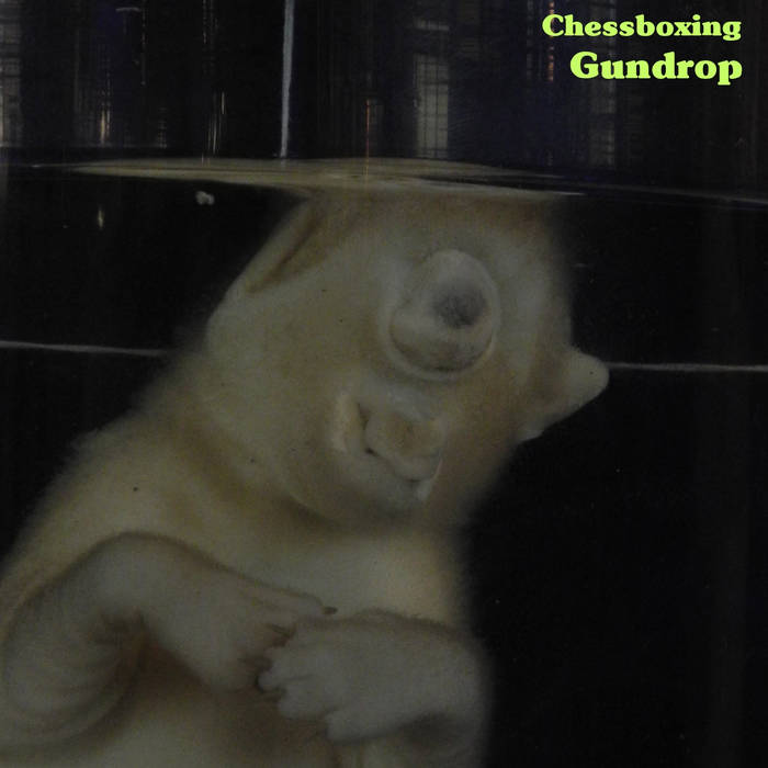 Chessboxing cover art