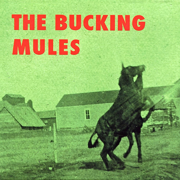 the Bucking Mules cover art