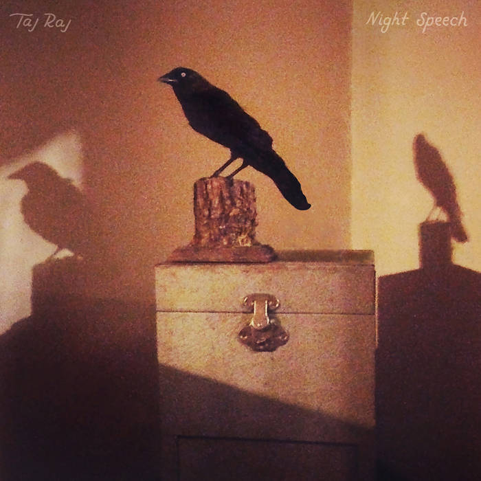 Night Speech cover art