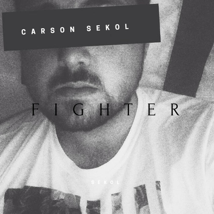 Fighter cover art