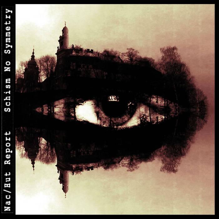 Schism No Symmetry cover art