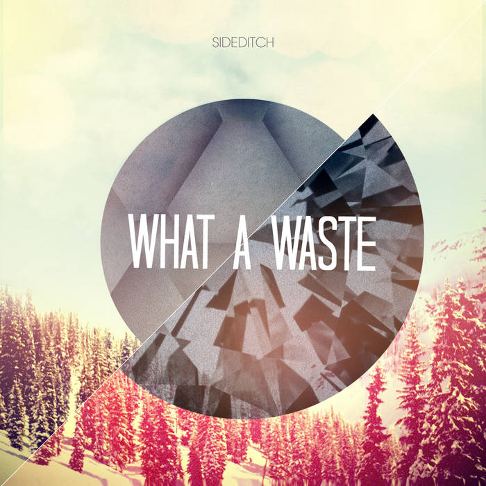 What A Waste cover art
