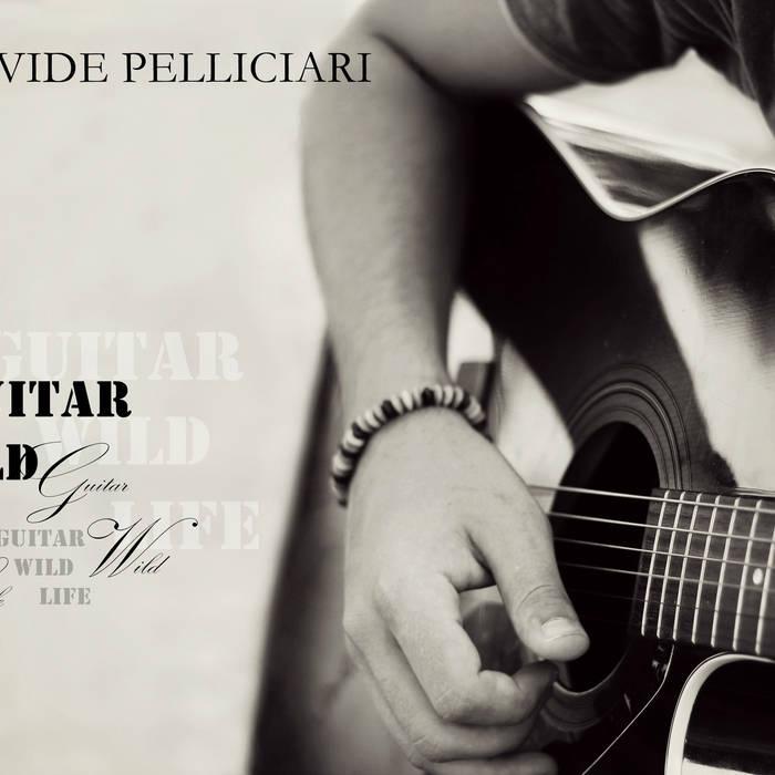 Guitar, Wild, Life (Demo) cover art