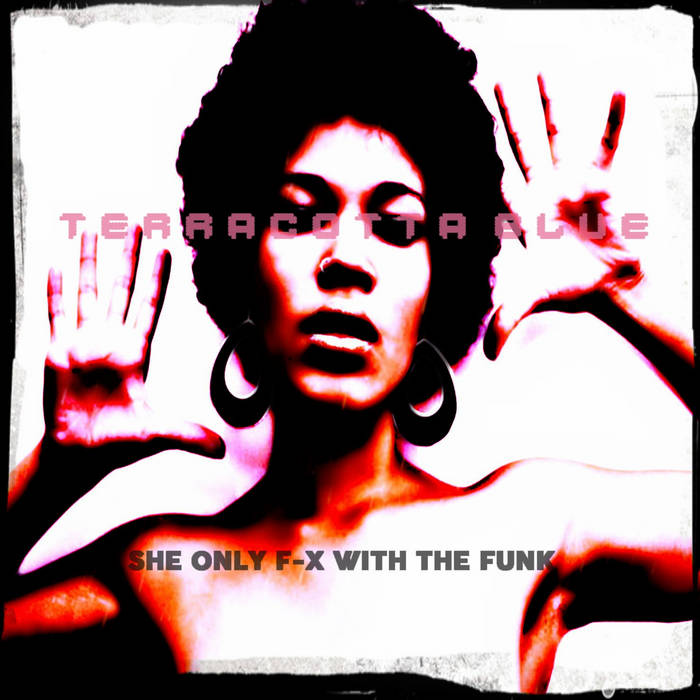 She Only F-x With The Funk cover art