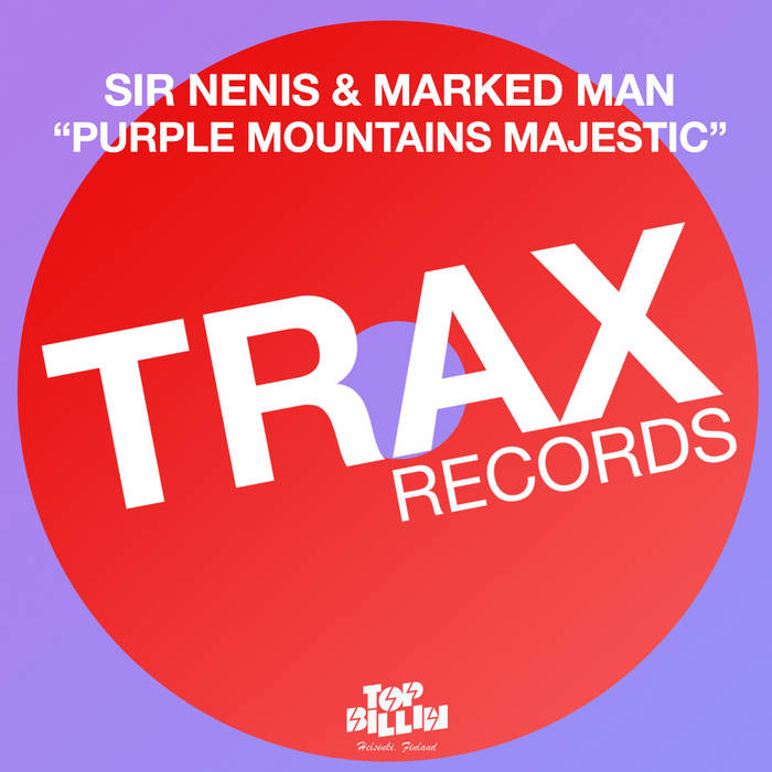 Purple Mountains Majestic cover art